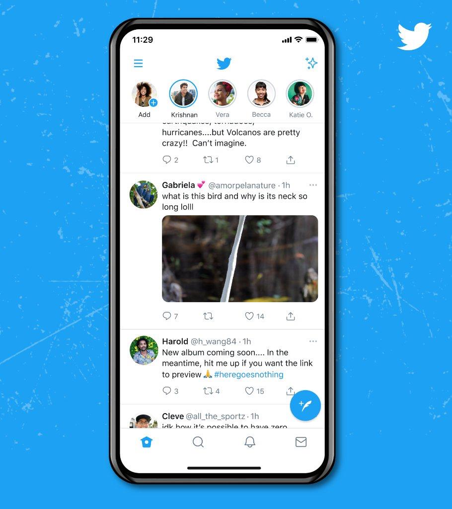 Smaller Twitter image